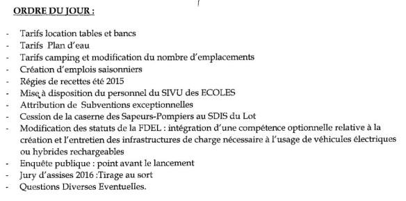 Conseil Municipal n°11_ODJ